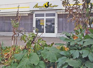 Eingang durch Blumenbeet